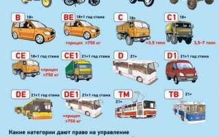 Какие машины можно водить с категорией С1